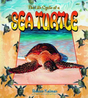 Sea Turtle - Kalman, Bobbie