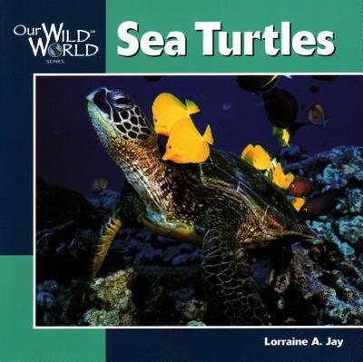 Sea Turtles - Jay, Lorraine A