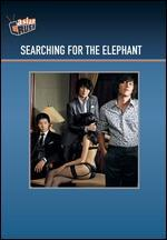 Searching for the Elephant