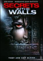 Secrets in the Walls - Christopher Leitch