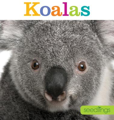 Seedlings: Koalas - Riggs, Kate