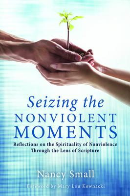 Seizing the Nonviolent Moments - Small, Nancy, and Kownacki, Mary Lou (Foreword by)