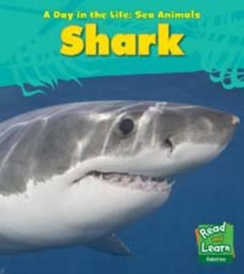 Shark - Spilsbury, Louise
