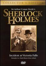 Sherlock Holmes: Incident at Victoria Falls [Collector's Edition] [2 Discs]