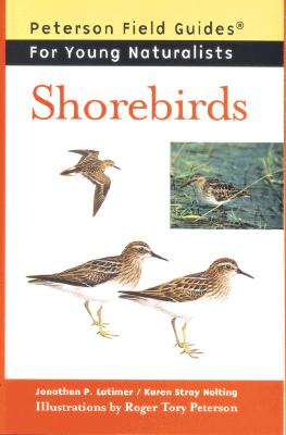 Shorebirds - Latimer, Jonathan P, and Nolting, Karen Stray, and Peterson, Virginia Marie (Foreword by)