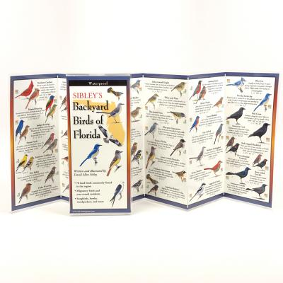 Sibley's Back. Birds of Florida -
