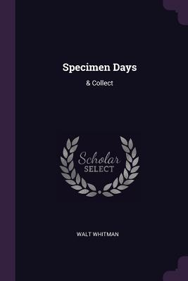 Specimen Days: & Collect - Whitman, Walt