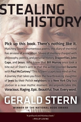 Stealing History - Stern, Gerald