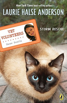 Storm Rescue - Anderson, Laurie Halse