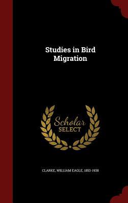 Studies in Bird Migration - Clarke, William Eagle