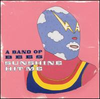 Sunshine Hit Me - A Band of Bees