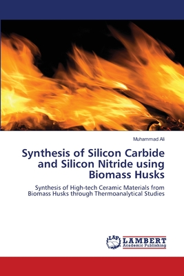 Synthesis of Silicon Carbide and Silicon Nitride Using Biomass Husks - Ali, Muhammad