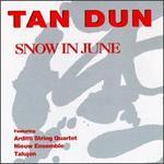 Tan Dun: Snow in June