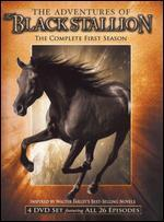 The Adventures of the Black Stallion: The Complete First Season [4 Discs]