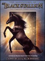 The Adventures of the Black Stallion: The Complete Third Season [4 Discs]