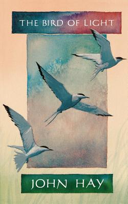 The Bird of Light - Hay, John