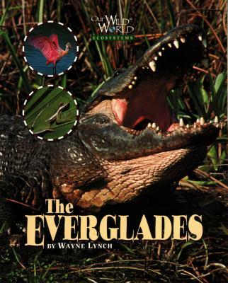 The Everglades - Lynch, Wayne, Dr.