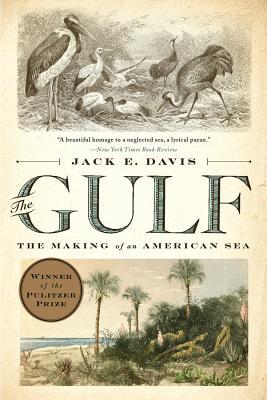 The Gulf: The Making of an American Sea - Davis, Jack E
