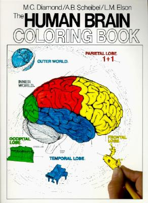 The Human Brain Coloring Book - Diamond, Marian C, PH.D., and Elson, Lawrence M, PH.D., and Scheibel, Arnold B, M.D.
