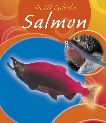 The Life Cycle of a Salmon - Trumbauer, Lisa