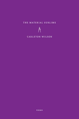 The Material Sublime - Wilson, Carleton