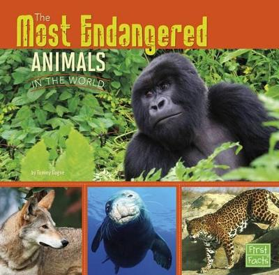 The Most Endangered Animals in the World - Gagne, Tammy