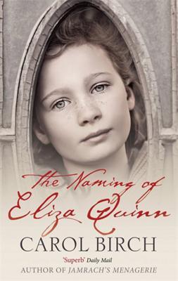 The Naming of Eliza Quinn - Birch, Carol