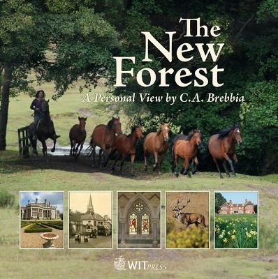 The New Forest: A Personal View - Brebbia, C A