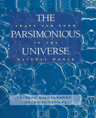The Parsimonious Universe: Shape and Form in the Natural World - Hildebrandt, Stefan