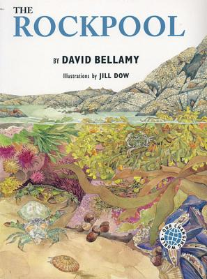 The Rockpool - Bellamy, David J