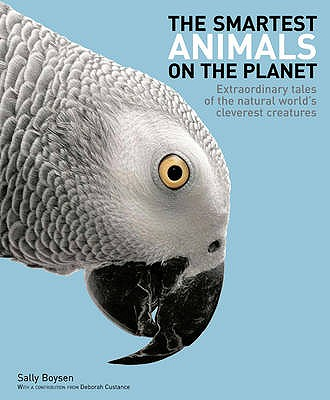 The Smartest Animals on the Planet: Extraordinary Tales of the Natural World's Cleverest Creatures - Boysen, Sarah, Dr.