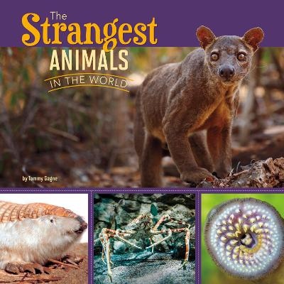 The Strangest Animals in the World - Gagne, Tammy