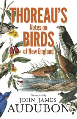 Thoreau's Notes on Birds of New England - Thoreau, Henry David, and Allen, Francis H (Editor)