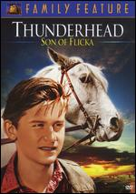 Thunderhead: Son Of Flicka - Louis King