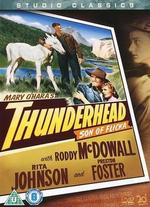 Thunderhead: Son of Flicka