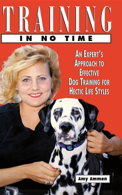 Training in No Time - Ammen, Amy