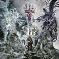 Understanding What We've Grown to Be - We Came as Romans