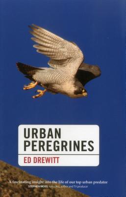 Urban Peregrines - Drewitt, Ed