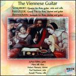 Viennese Guitar