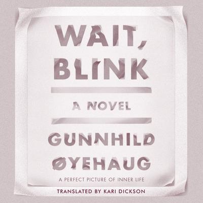 Wait, Blink - Oyehaug, Gunnhild, and Wilds, Heather (Narrator), and Dickson, Kari (Translated by)