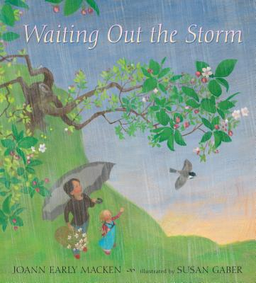 Waiting Out the Storm - Macken, Joann Early