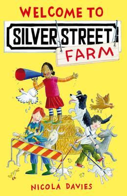 Welcome to Silver Street Farm - Davies, Nicola