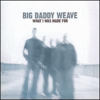 What I Was Made For [11 Tracks] - Big Daddy Weave