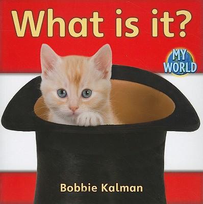 What Is It? - Kalman, Bobbie