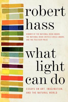 What Light Can Do: Essays on Art, Imagination, and the Natural World - Hass, Robert