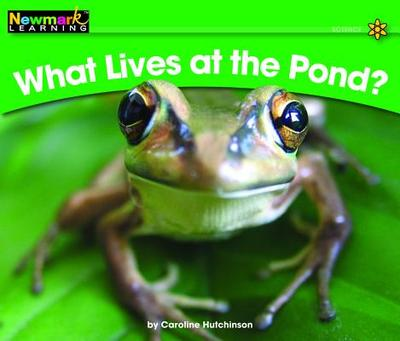 What Lives at the Pond? - Hutchinson, Caroline
