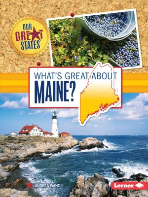What's Great about Maine? - Wang, Andrea