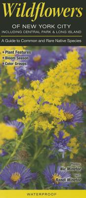 Wildflowers of New York City, Including Central Park & Long Island: A Guide to Common and Rare Native Species - Minetor, Randi, and Minetor, Nic