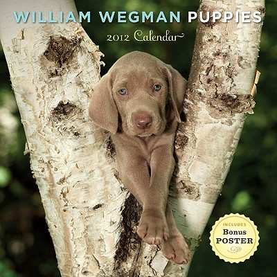 William Wegman Puppies Calendar - Wegman, William