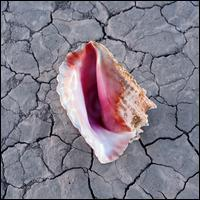 Wonderful Wonderful [Deluxe Edition] - The Killers